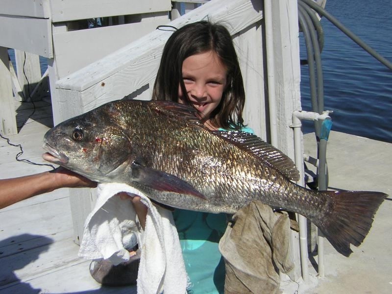 LEXI AND HER BLACKDRUM